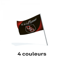 Drapeau supporter 40x30 - quatre couleurs