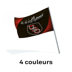 Drapeau supporter 70x45 - quatre couleurs